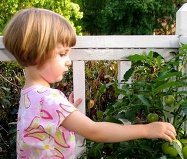Юный садовод на даче