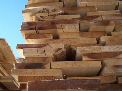 Защита древесины от гниения фото