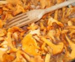 Солянка с грибами в мультиварке рецепты с фото