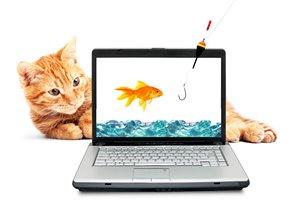 Ноутбук - новогодний подарок сыну фото