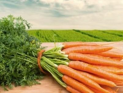 Как заморозить морковь на зиму рецепты фото