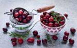 Клюква: полезные свойства и противопоказания