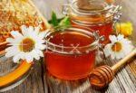 Каштановый мед. Польза и свойства каштанового меда